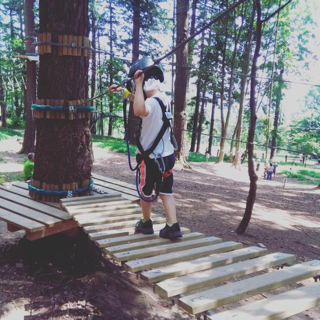 Percorsi tra gli alberi per famiglie con bambini in Lombardia