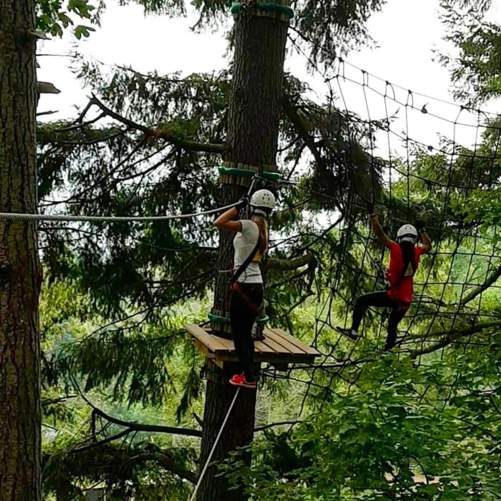 Impegnativo percorso sugli alberi nel parco avventura per adulti.