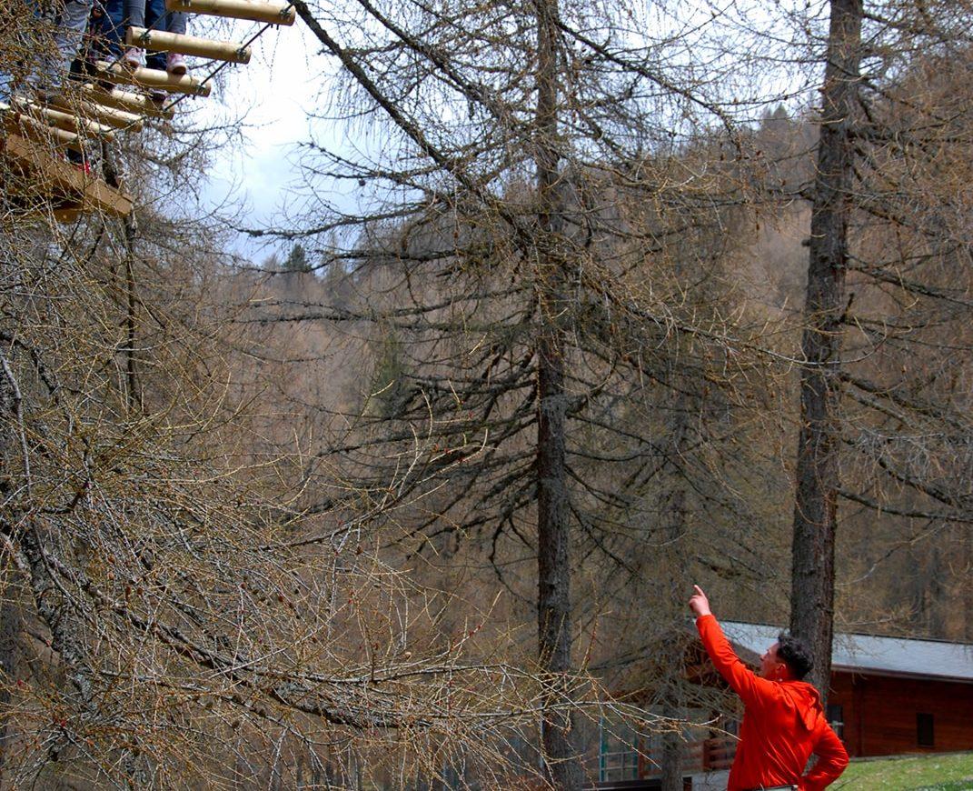Ostacolo percorso per bambini nel parco avventura in Lombardia