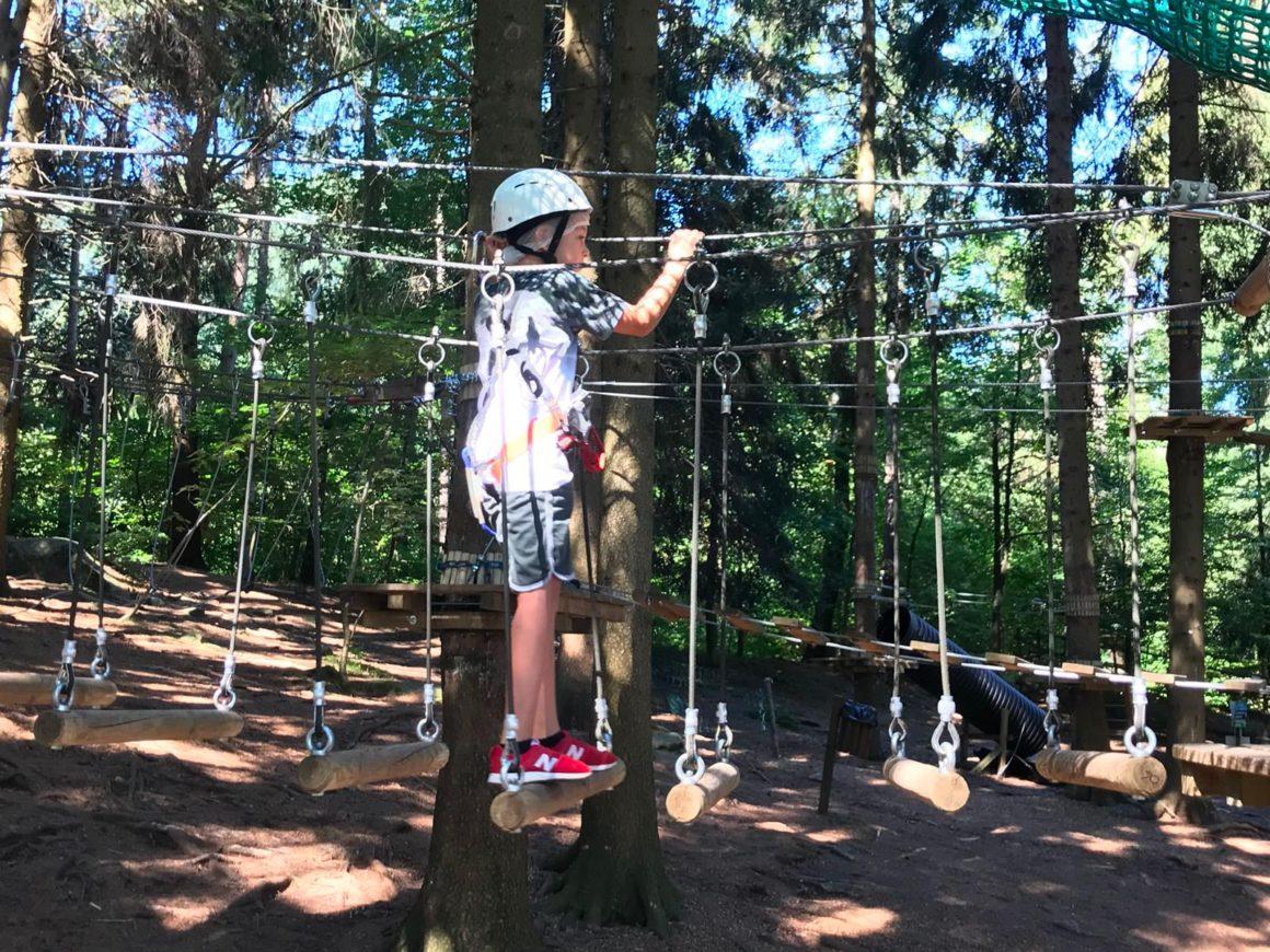 Percorsi tra gli alberi per famiglie con bambini a Albavilla