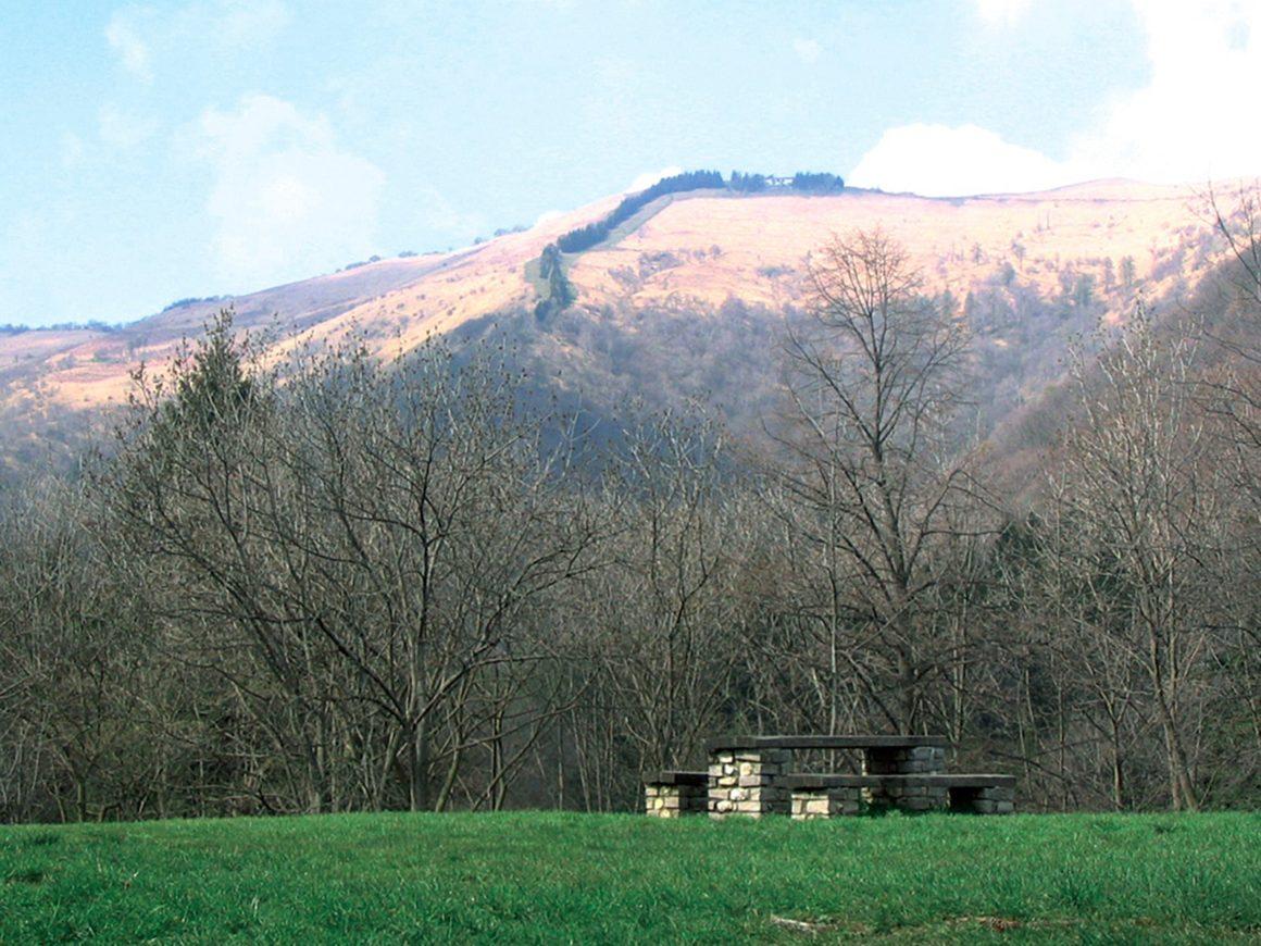 Pranzo al sacco nel parco dell'Alpe del Vicerè