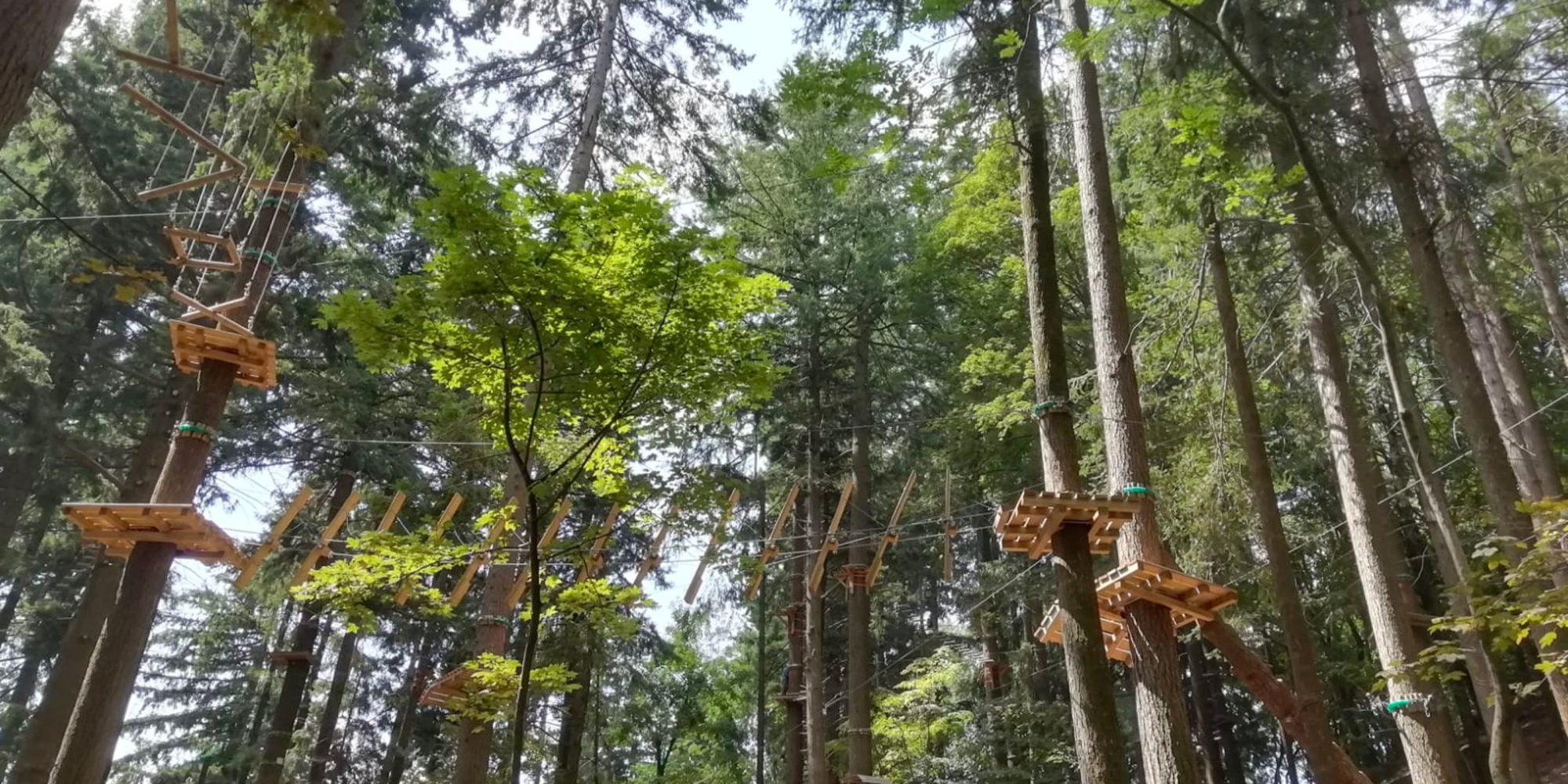 Percorso sugli alberi per famiglie e adulti vicino a Lecco