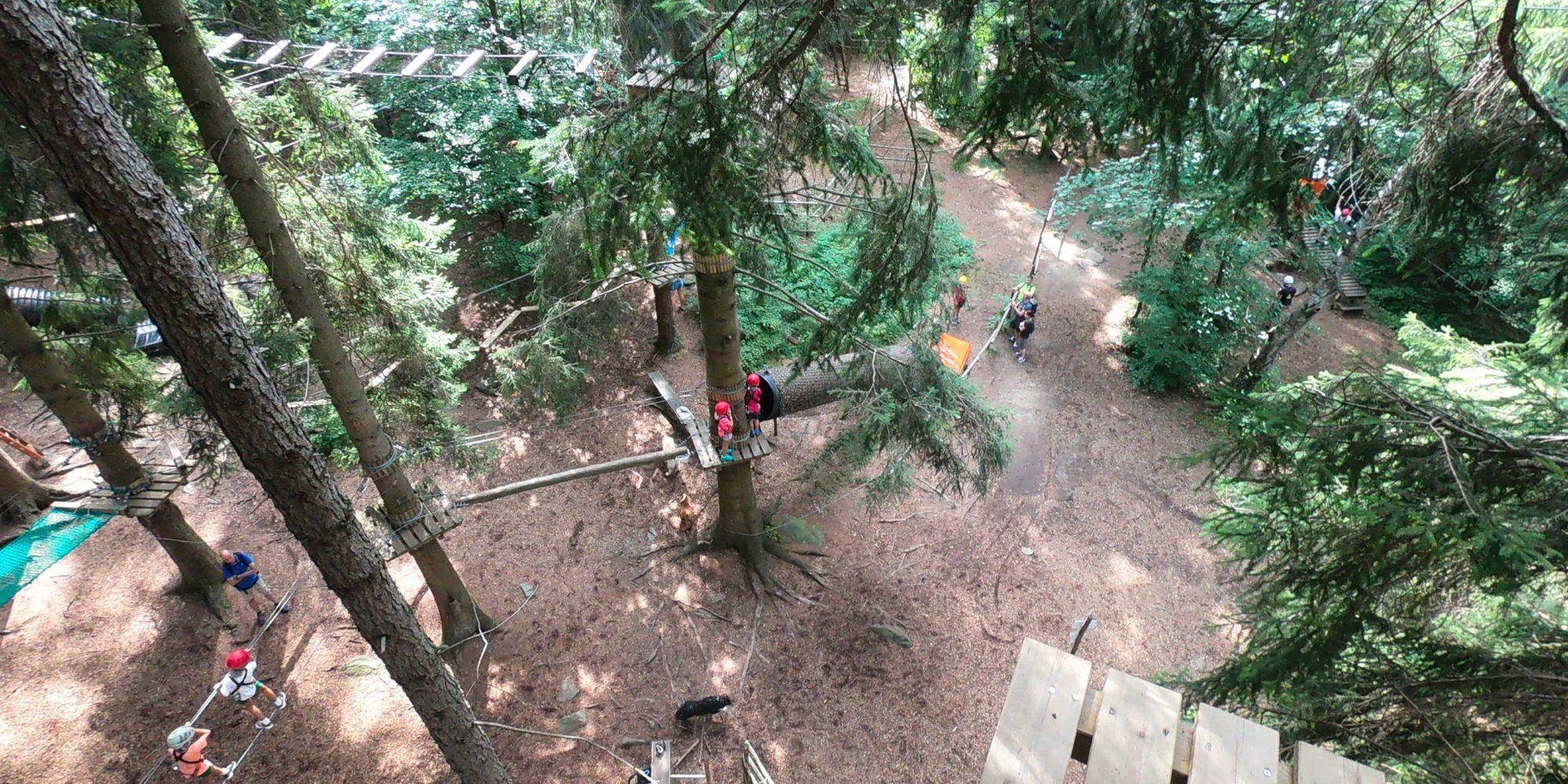 Percorsi avventurosi per adulti e bambini al Jungle Raider Park di Civenna vicino a Como