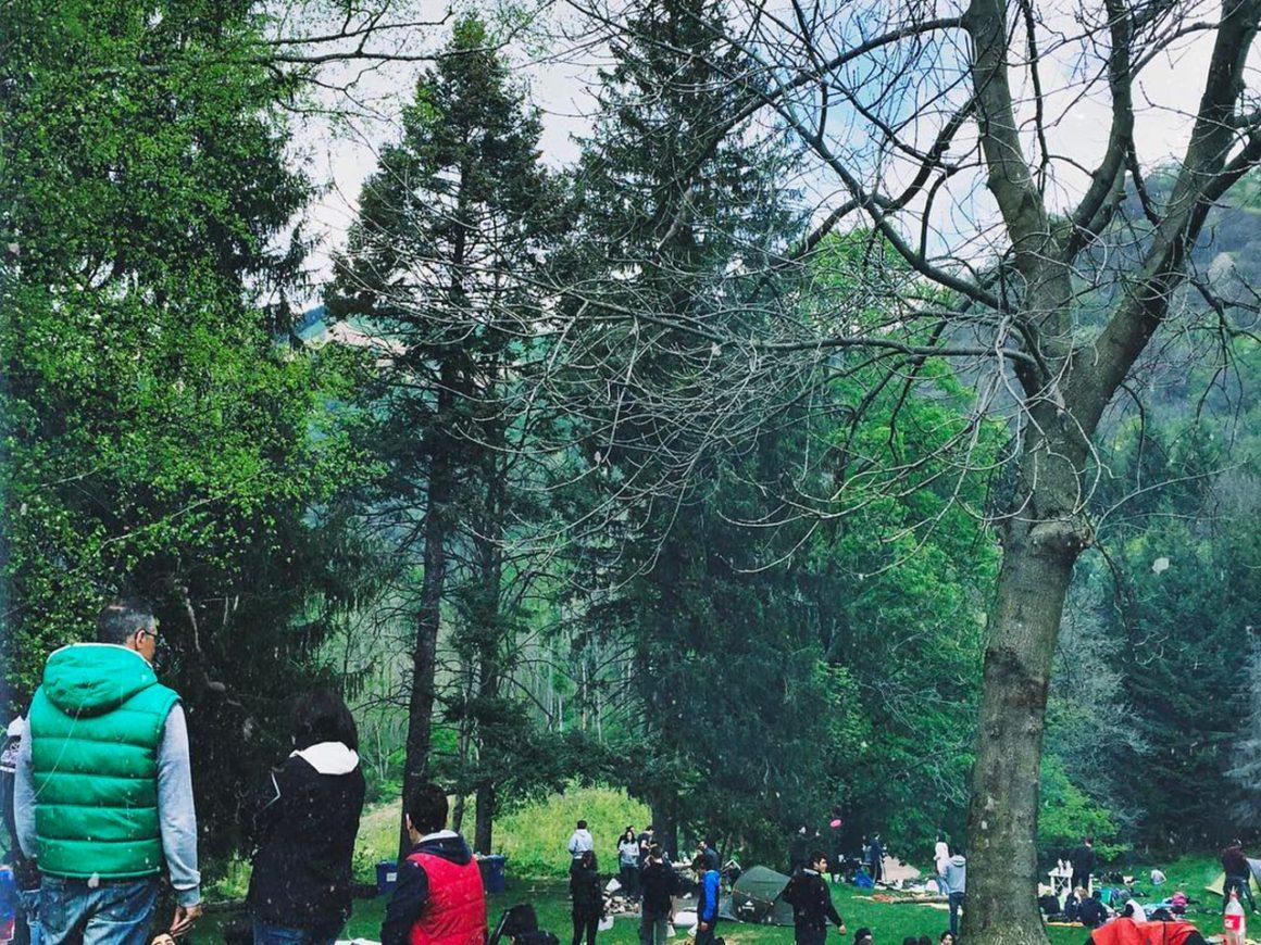 Pranzo al sacco al parco avventura di Albavilla