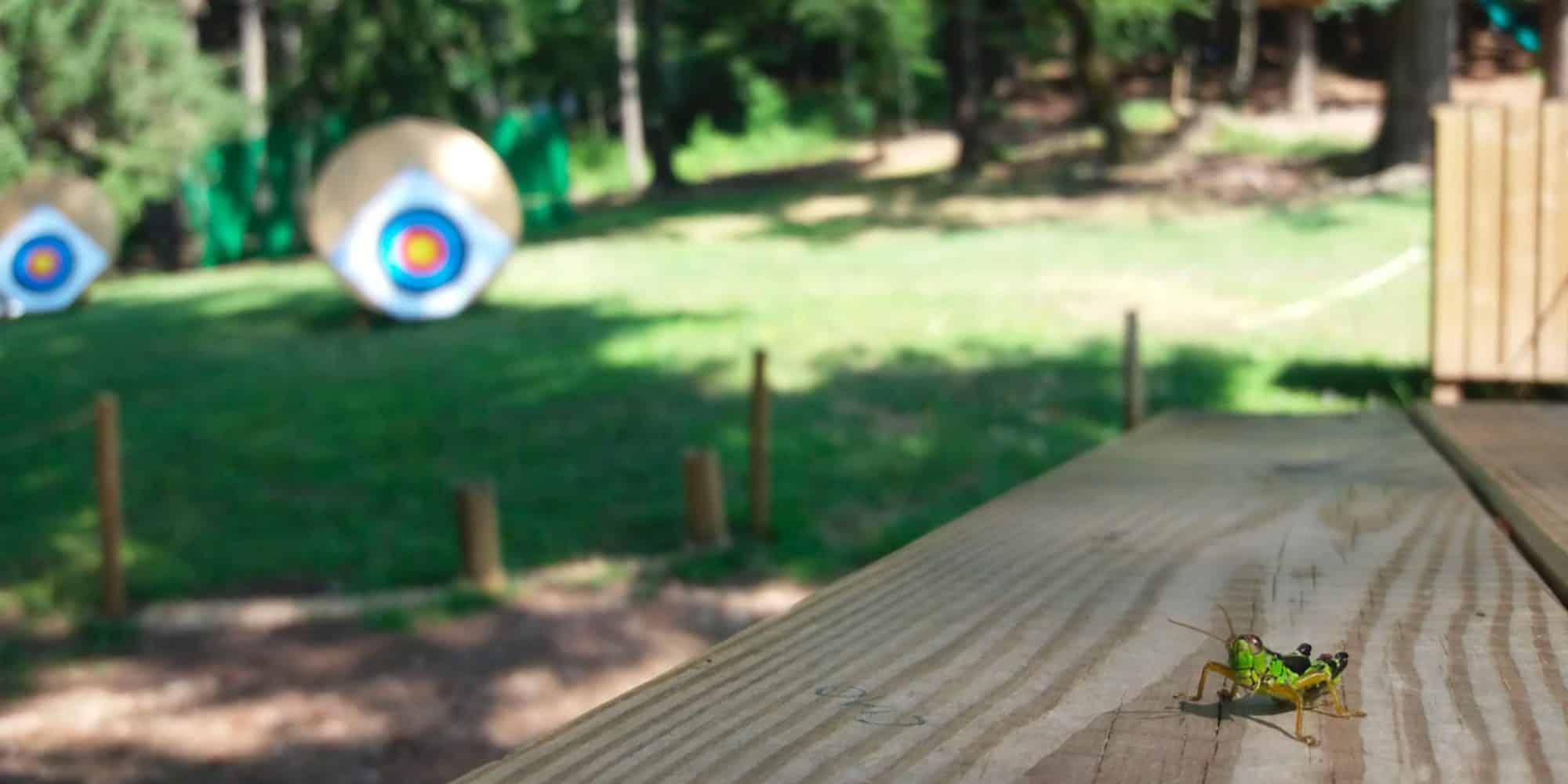 Tiro con l'arco al parco divertimenti a Lecco