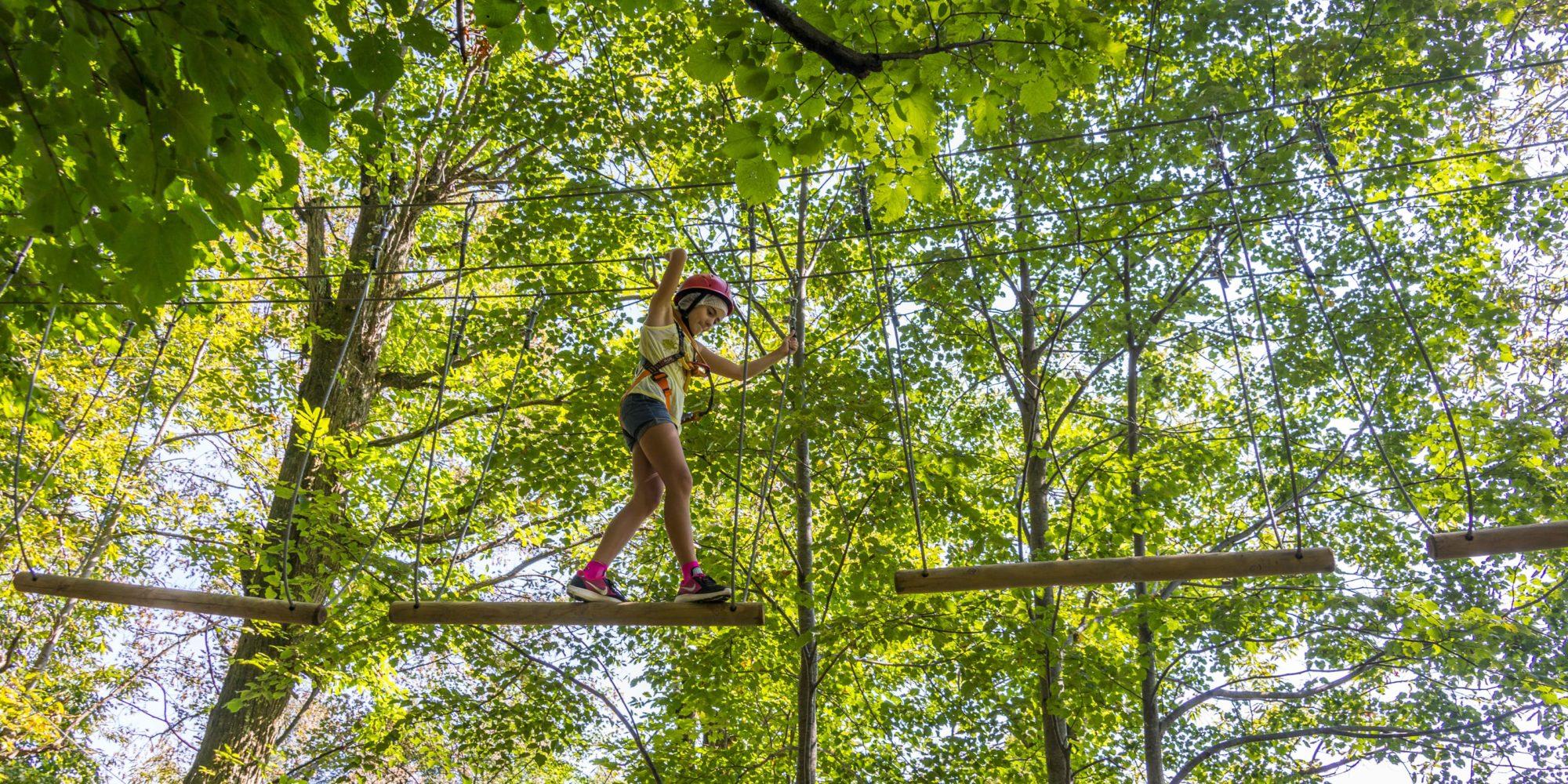 Divertenti percorsi sugli alberi al bosco park