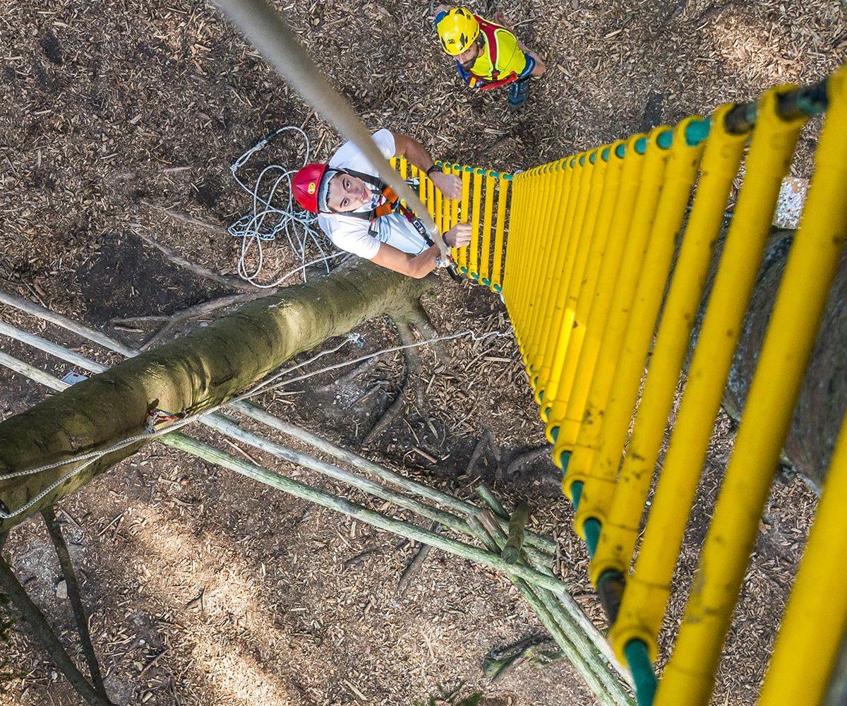Scala per salire sui percorsi del Jungle Raider Park di Civenna