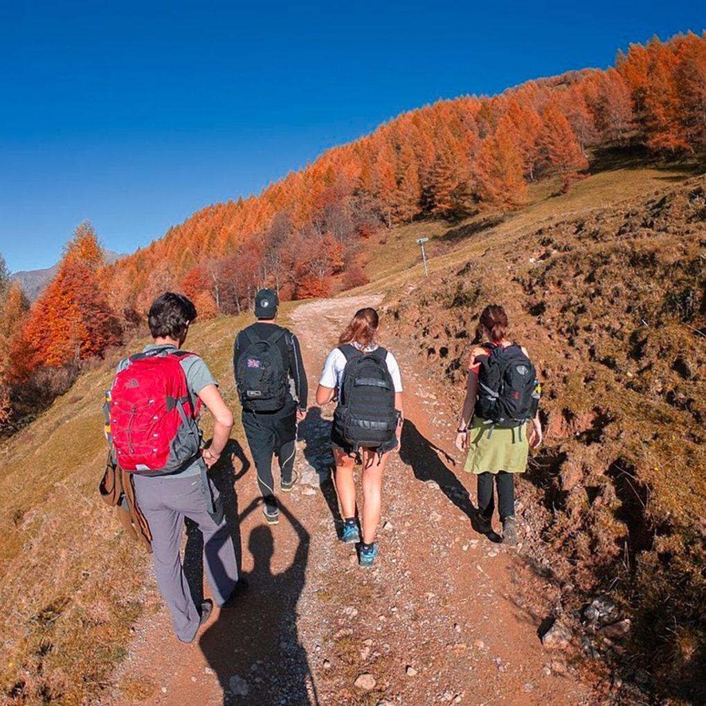 Sentieri adatti a tutta la famiglia vicino al parco avventura in Valsassina