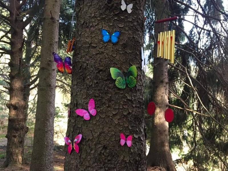 Magia, avventure e giochi nel bosco per bambini