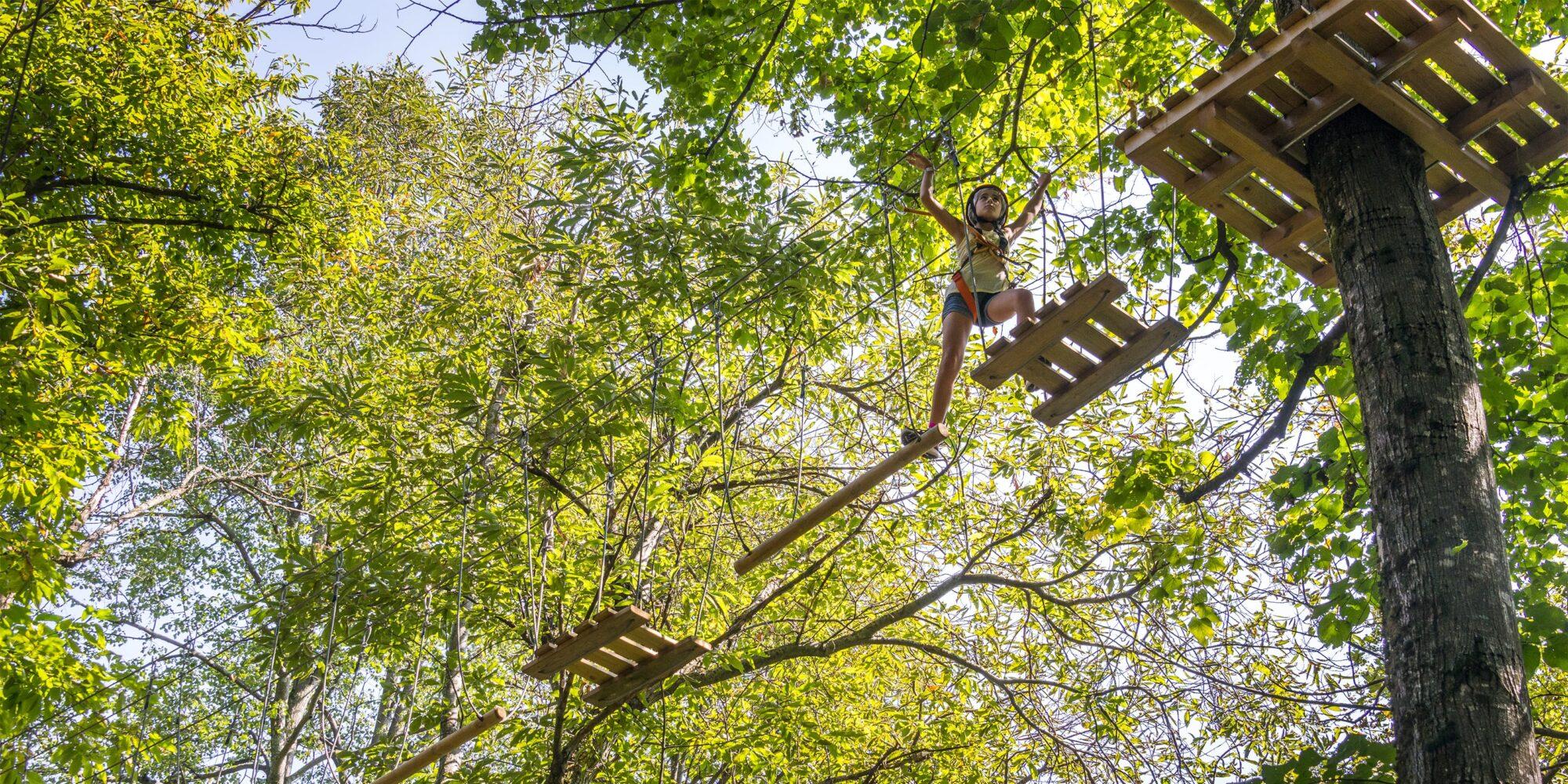 Percorsi tra gli alberi al Jungle Raider Park