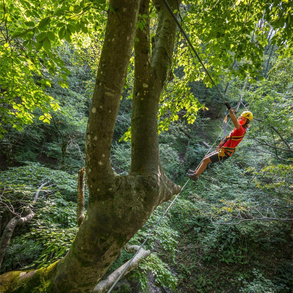 Costruzione parco avventura tra gli alberi