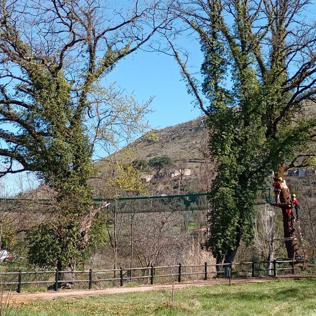 Costruzione di un parco avventura in provincia di Frosinone