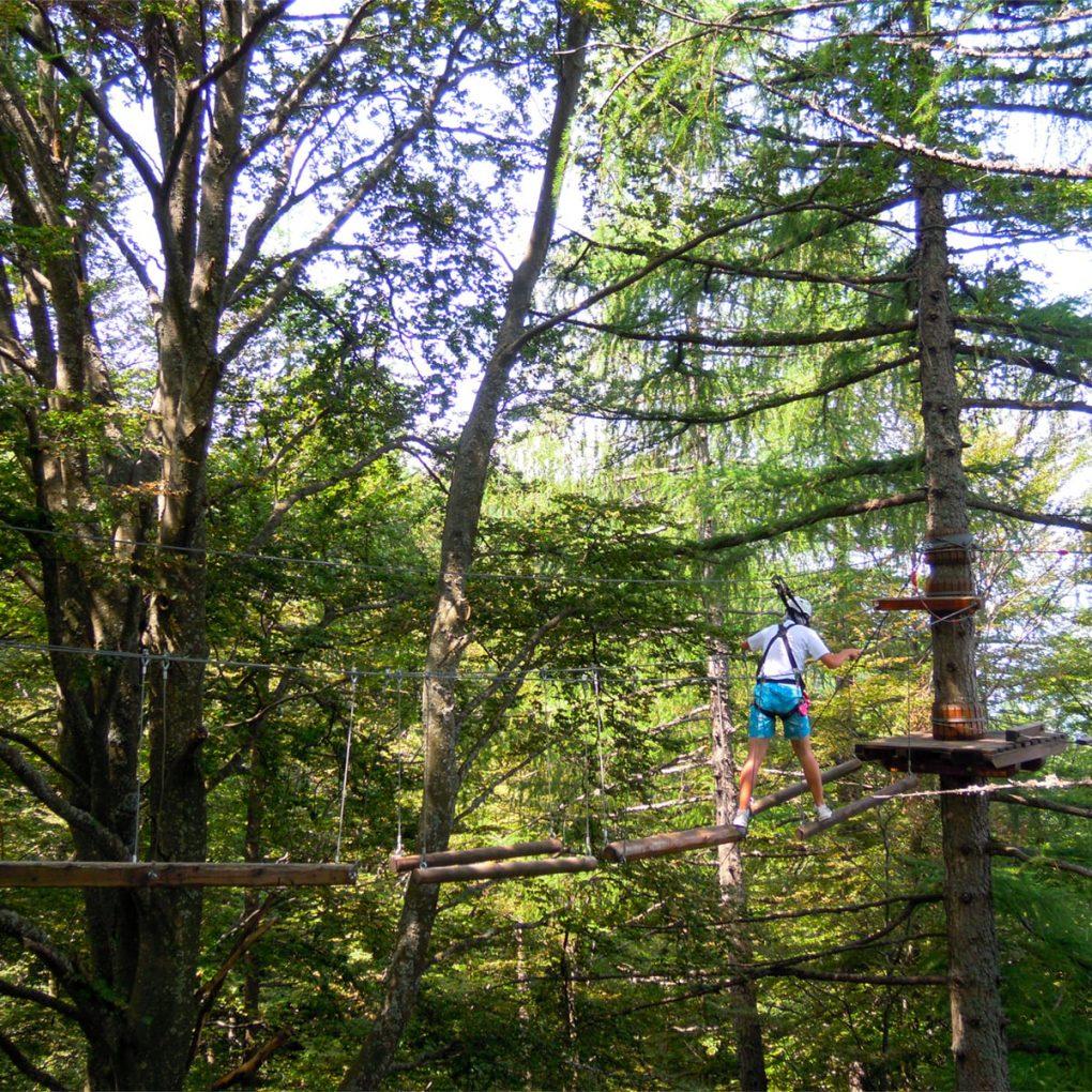 Realizzazione percorsi treeline Margno